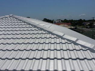 roof-restoring